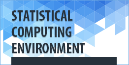 Statistical-Computing-Environment