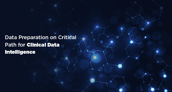 Data Preparation on Critical Path for Clinical Data Intelligence